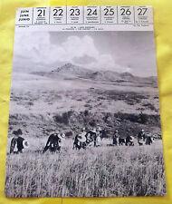1959 Image Poster JAÉN ESPAGNE. la Moisson Régionalisme art print blé