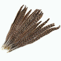 Natural 20Pcs Pheasant Tail Feathers 12-14 Inch Long Craft Party DIY #NE8