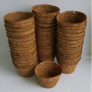 Biodegradable Mini Coir Pots 8cm x 5.5cm depth plant seed seedling pots x 50