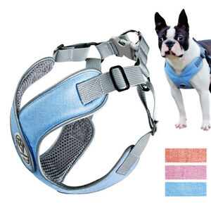 No Pull Step In Dog Harness Adjustable Mesh Padded Vest Reflective for Schnauzer