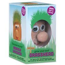 GROW YOUR OWN MR GRASSHEAD - 00748 WATER GROWING GRASS CUT STYLE GARDEN KIDS FUN