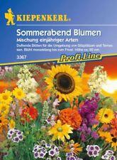 Kiepenkerl - Noche De Verano Flores 3367 Mezcla Un Año TIPOS Florece por MEses