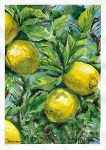 original painting A4 11TrO art samovar Watercolor modern lemons Fruit