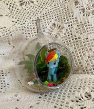 Mlp Rainbow Dash Upcycled Succulent Terrarium Magical Ponies Planter Hanging Kit