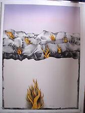 BRUNO BRUNI Terra del fuoco 1972 numerato autografato WVZ Huber 106A