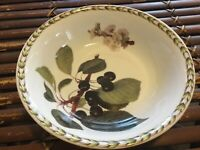 Rare Queen's Royal Horticultural Society Hookers Fruit Black Cherry Cereal bowl
