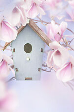 BEAUTIFUL BIRD BOX CANVAS PICTURE #44 STUNNING FLORAL FLOWERS A1 CANVAS