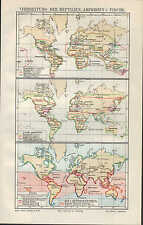 Landkarte map 1908: VERBREITUNG DER REPTILIEN, AMPHIBIEN U. FISCHE.