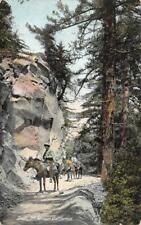 CA, California  MOUNT WILSON~Horseback Riders on TRAIL  Horses  c1910's Postcard