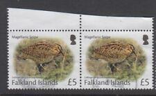 Falkland Island £5 fine used stamp - Magellanic Snipe