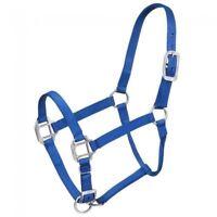 Tough-1 Royal Blue Premium Nylon Halter Brushed Hardware Horse Tack 50-915H