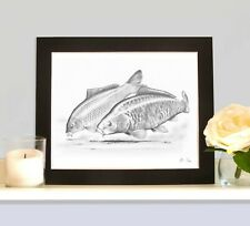 THE COMMON AND THE MIRROR Carp Picture Fishing Present Fish Art Drawing Print