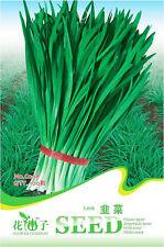 1 Pack 100 Leek Seeds Chinese Chive Allium Tuberosum Organic C068
