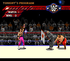 WWF Wrestlemania Arcade Game - Sega Genesis Game Only