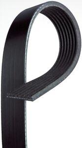 Serpentine Belt ACDelco GM Original Equipment 12634319