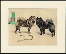 CHOW CHOW DOGS LOVELY DOG PRINT MOUNTED READY TO FRAME
