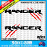 EXTRA LARGE RANGER Side 2 color Sticker #1 Decal sticker Raptor Ford Car Avery