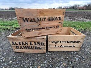 3 Stück Obstkisten Weinkisten Holzkisten mit Aufdruck