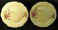 Homer Laughlin Virginia Rose Meadow Goldenrod Lunch Plates 9 3/8 Set 2 Excellent