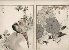 1881 double woodblock prints, Bairei, Birds Flowers, plate 4, Vol 1