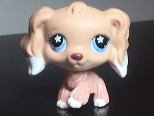 Littlest Pet Shop Cocker Spaniel #568 Cream White Dipped Blue Snowflake Eyes