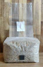 More details for injectable pf tek mushroom substrate bag *all-in-one* 750g - 2kg ~0.2μm filter