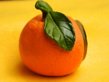 Orange Sweet Citrus Fruit Food Vegetable Refrigerator 3D Fridge Magnet