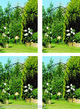 4 x Garden Arches / Rose Arches