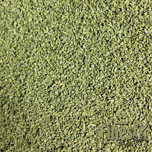 500g SPIRULINA GRANULATE GRANULATED AQUARIUM FOOD Loach / Plec etc