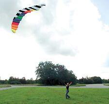 Kompletter Drachen Lenkdrachen Lenkmatte mit 2 Meter Spannweite inkl. 30m Schnur