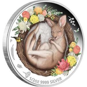1/2 Oz Silber Dreaming Down Under (1) Kangaroo 2021 Australien 1 AUD farbig