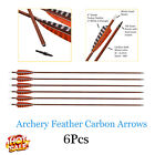 """Archery Arrows Hunting Carbon Shafts 4"""" Feather Vanes for Compound Recurve Bows"""