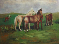 horses in the field large oil painting canvas modern art contemporary original