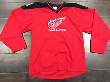 Detroit Red Wings NHL Stitched Alternate Hockey Jersey XL (20) In Youth