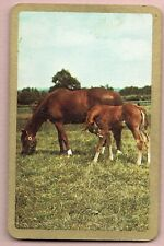 swap cards HORSES newsagent blank back gold silver