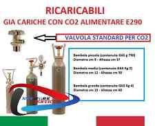 E290 BOMBOLA CO2 5KG ALIMENTI GASATORI ACQUARIO PIANTE+ STAFFA