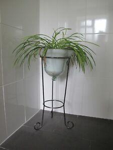 Floor Glass Bell Plant Pot Holder Gold Fish Bowl