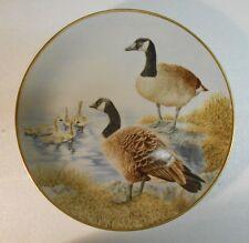 Collector Water Bird Plate Eric Tenney Canada Goose 24K gold rim Porcelain