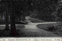 Brunshaupten Mecklenburg Postkarte ~1910 Langeschneese Hirschschneese Kreuzung