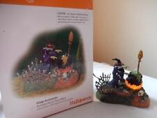 Department 56 Halloween Hocus Pocus Witch #56.52516 (Animated)