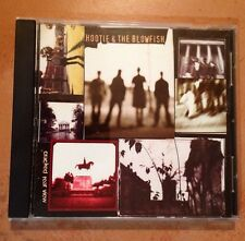 ☀️ Cracked Rear View by Hootie & the Blowfish, Music CD Hold My Hand USA MINT