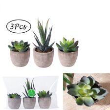 3x Artificial Succulent Plants Faux Cacti Grass Mini Potted Plants Indoor Decor