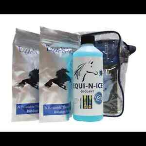 Equi-N-ice Stable Pack - reduces swelling & pain in horses tendons