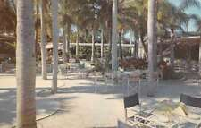 Largo Florida Palm Garden Restaurant Patio Vintage Postcard K72574