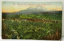 Mt Shasta, Upper and Lower Tracks Cantara Loop Southern Pacific Co Postcard F10