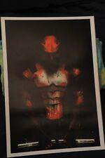 Poster, Punisher/Daredevil mash up longest side 20 inches  (396OZ)