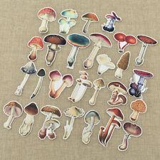 26pcs Retro Mushroom Illustration Vellum Paper Stickers for Journaling Project