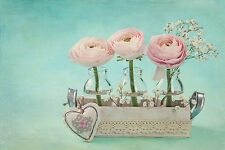 BEAUTIFUL PINK FLOWERS CANVAS PICTURE #36 STUNNING VINTAGE SHABBY CHIC A1 CANVAS