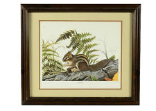 Framed Chipmunk Print by  Frank Reisiger with Documentation 528/1000