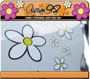 New White Daisy Car Stickers - Pack of 30